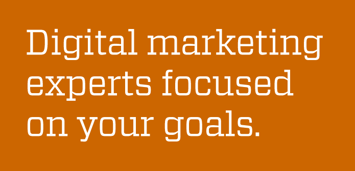 Team of digital marketing experts focused on your goals