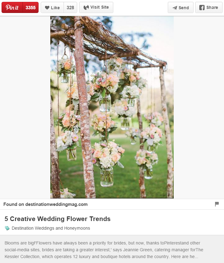Pinterest Pin Screenshot
