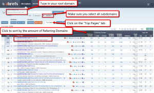 Find top pages via AHrefs