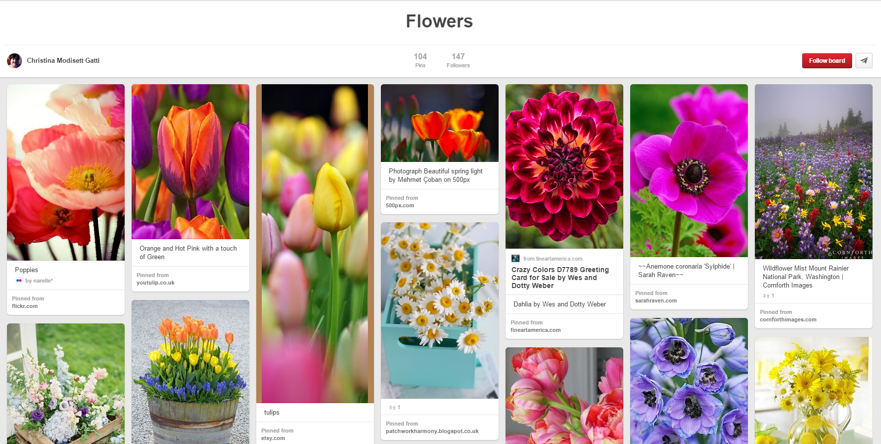 Pinterest Board Screenshot